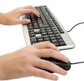 Female hand typing — Стоковое фото