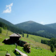 Carpathian Mountains — Foto de Stock