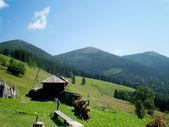 Carpathian Mountains — Stock Photo