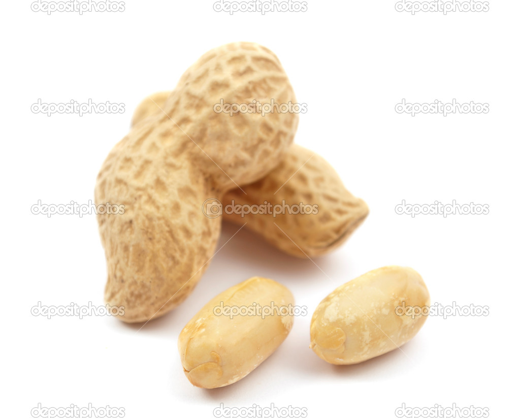 Peanuts on a white background — Stock Photo #4910561