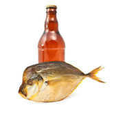 Smoked fish with a beer — Stock Photo