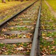 Train track — Stock Photo