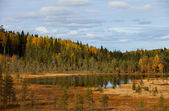 Wood lake. autumn landscape. nature. Karelia. Russia — Stock Photo
