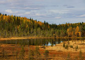 Wood lake. autumn landscape. nature. Karelia. Russia — Stock Photo
