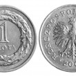 Polish zloty - Stock Photo