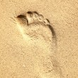 Footprint - Photo