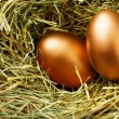 Gold eggs - Stock Photo