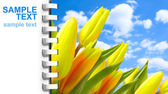 Notebook page with picture of tulips — Stock Photo