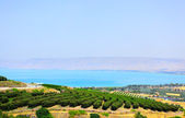 Sea of Galilee — Stock Photo