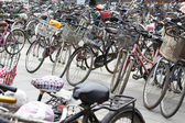 Plenty bicycles — Stock Photo