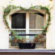 window of old house with convolvulus — Stock Photo
