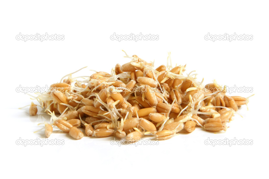 Wheat germs on a white background — Stock Photo #4734397