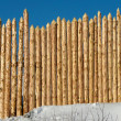 Wooden paling — Stock Photo #4654354