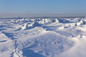 Sea ice — Stock Photo