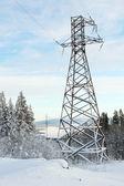 Yüksek gerilim enerji iletim hatları kış orman — Stok fotoğraf