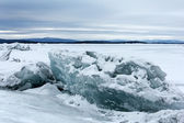 Sea ice — Photo