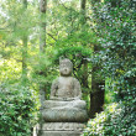 Buddha statue — Stockfoto #3929166