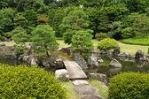 Japanische park — Stockfoto