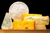Peynir türleri — Stok fotoğraf