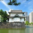 Imperial palace in Tokyo - Stock Photo