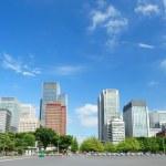 Tokyo Skyline — Stock Photo #4595645