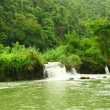 Tropical River — Stock Photo #4595701