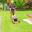 The Lawnmower Man — Stock Photo