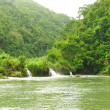 Stock Photo: Tropical River