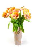 Colourful tulips — Stock Photo