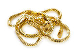 Golden chain isolated on the white background — Stock fotografie