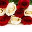 Red and white roses isolated on white — Stock Photo