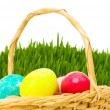 Eggs in the basket and grass isolated on white — Stock Photo