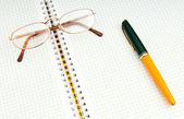 перо и глаз очки на странице — Стоковое фото