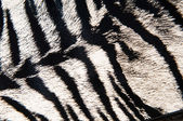 Imitation of tiger leather as a background — Stockfoto