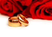 Red roses and rings isolated on the white background — Stok fotoğraf