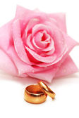 Two wedding rings and rose isolated on white — Stock Photo