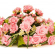 Big bouquet of roses isolated on white — Stock Photo