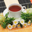Cup of tea with herbs and daisies — Stock Photo #4367415