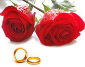 Wedding concept with roses and rings — Стоковое фото