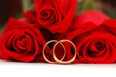 Two gold wedding rings and red roses — Stockfoto