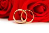Two wedding rings and red roses isolated on white — Stock Photo