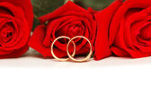 Two wedding rings and red roses isolated on white — Foto de Stock