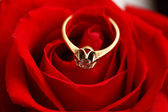 Gold ring with diamond on red rose — Stock Photo