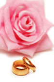 Two wedding rings and pink rose at the background — Stockfoto