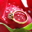 Wedding ring with brilliant on the red rose — Stock Photo