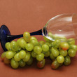 Cluster of green grapes and wine glass — Stock Photo #4374405