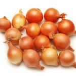 viele zwiebeln isoliert auf weißem hintergrund — Stockfoto