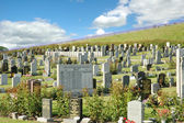 Landscape photo of old cemetery with many tombstones — Stock Photo