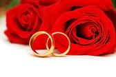 Two wedding rings and red roses isolated on white — Stock fotografie