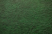 Pattern of green leather - can be used as background — Stockfoto